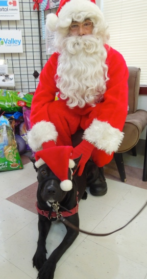 Nico and Santa