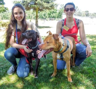 Mya, Jade, Gracie and Jessica