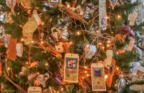WHS Christmas Tree 2015