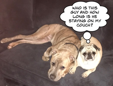 Opie and Harley (1)