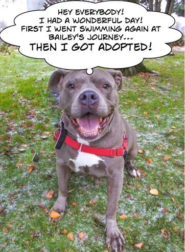 mary-adopted-2
